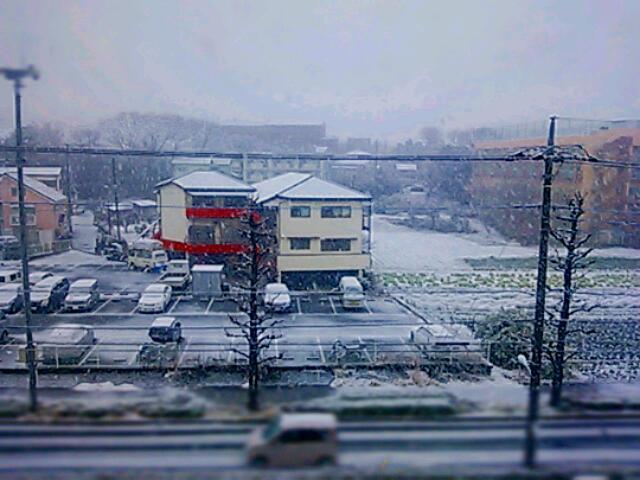 雪の特異日