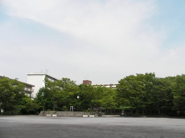 Park_01