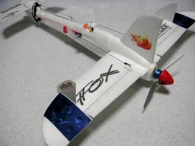 Fox_426