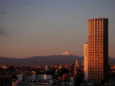 Fuji_50