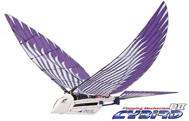 Cybird