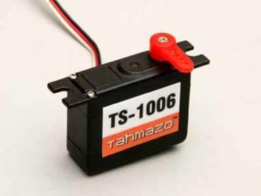 Ts1006